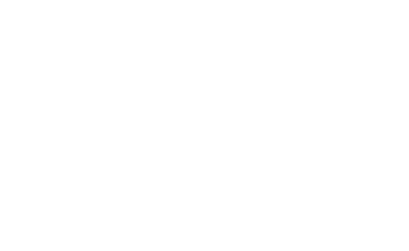 De Woonerije